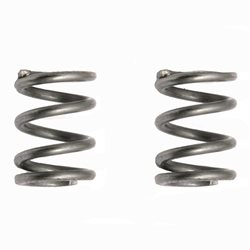Team Associated Springs .024 wire, short (2)