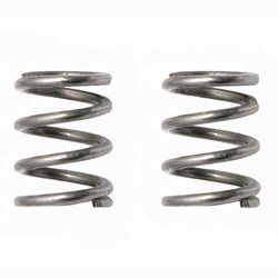 Team Associated Springs .022 wire, short (2)